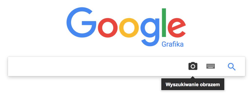 jak szukać w sieci
